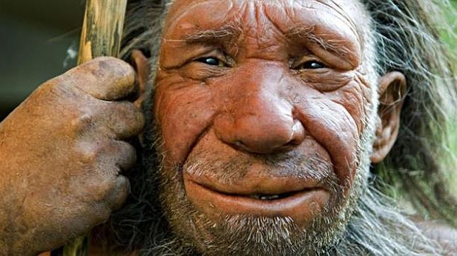 Exposició itinerant: Homo neandertal a Catalunya